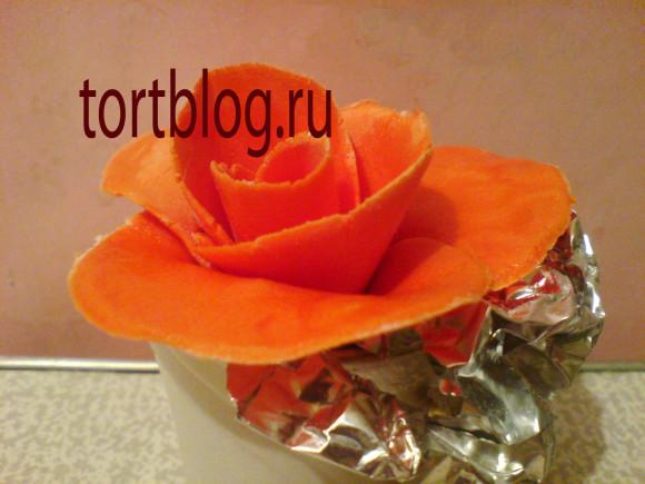 розы из мастики мастер класс